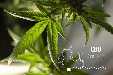 Cannabidiol CBD Molekül