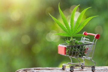 Cannabis Produkt